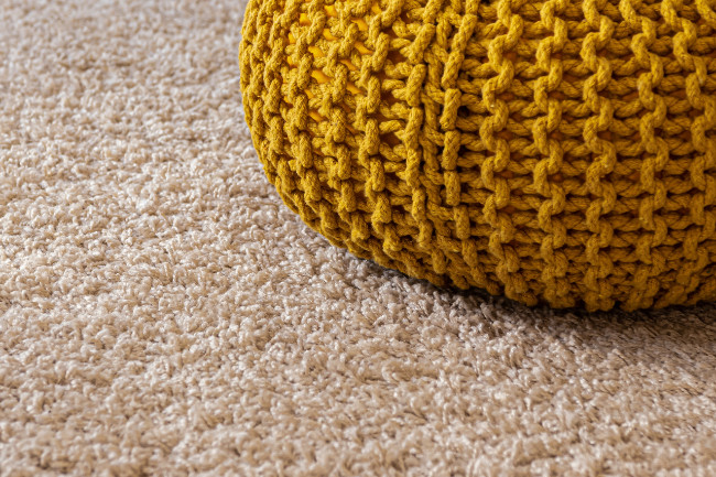 Carpets Cleaned Professionally